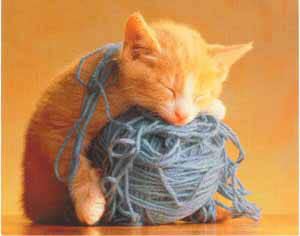 http://www.softcat.ru/images/cat1/cat36.jpg
